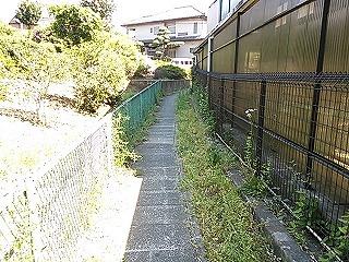 kamisakusho3-4.jpg
