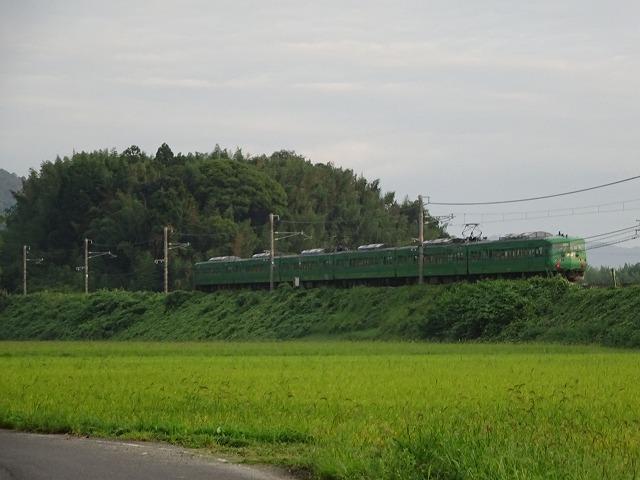 DSC00586.jpg