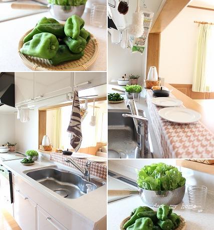 今朝のキッチン