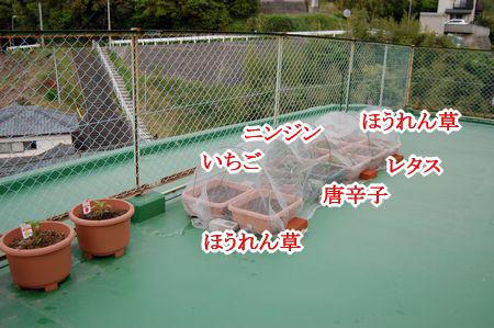 image3_20140422210404e5e.png