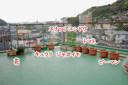 image_201404222058170b8.png