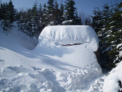 避難小屋は雪の中