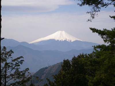 不老山からの富士