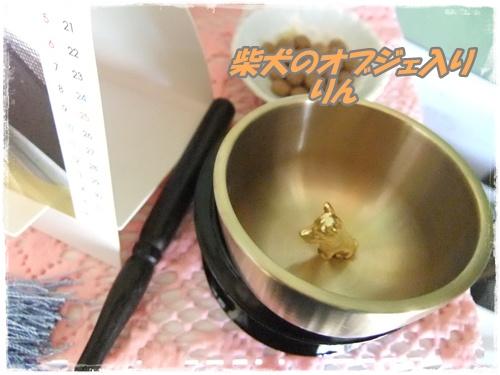 2014_0329ラッキ-初七日0003