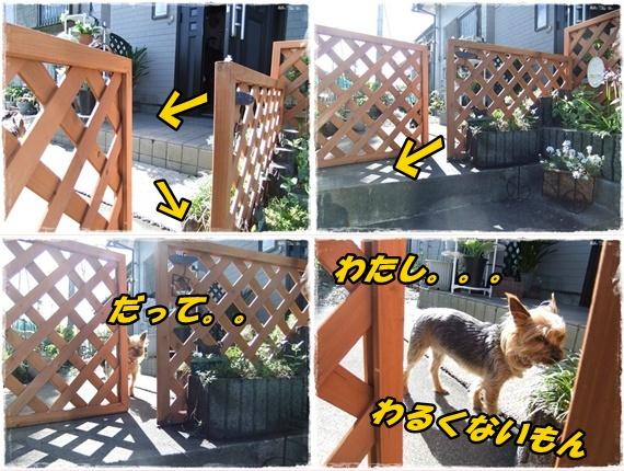 2014_0502愛の逃亡劇0015-tile