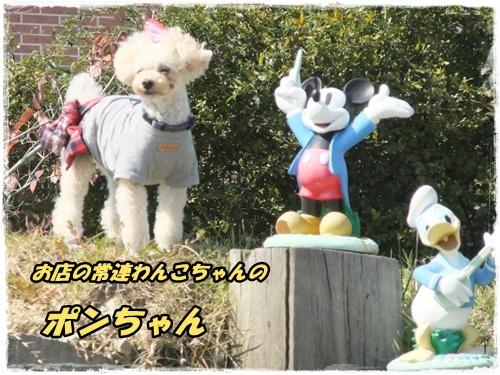 2014_1011moko動画オフ会0029