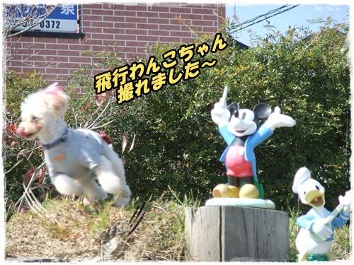 2014_1011moko動画オフ会0030