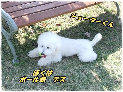 2014_1011moko動画オフ会0035