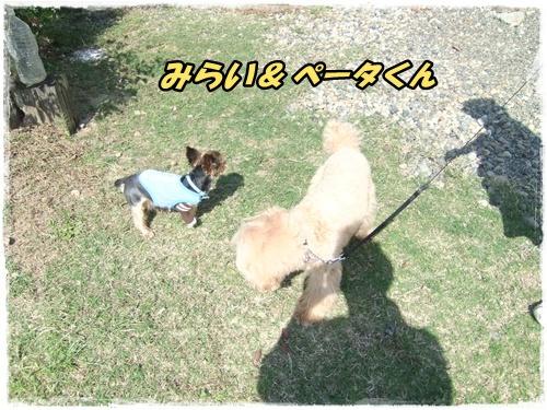 2014_1011moko動画オフ会0038