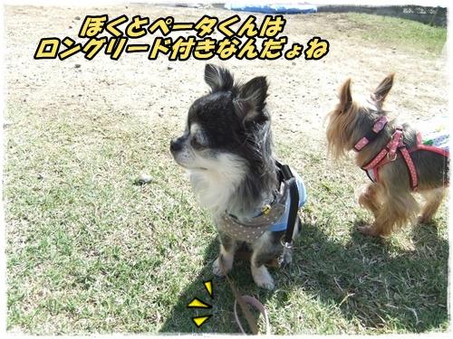 2014_1011moko動画オフ会0040