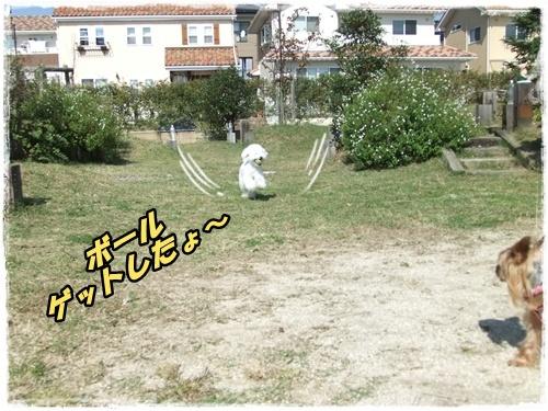 2014_1011moko動画オフ会0041