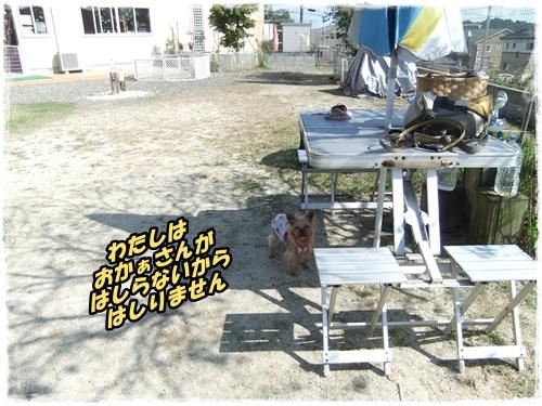 2014_1011moko動画オフ会0043