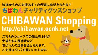 chibawanshop2_320x180.jpg