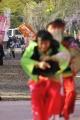 2014・京都さくらよさこい12