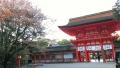 2014・京都さくらよさこい16