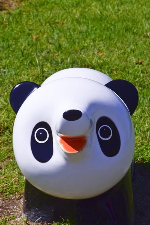 panda_14_9.jpg