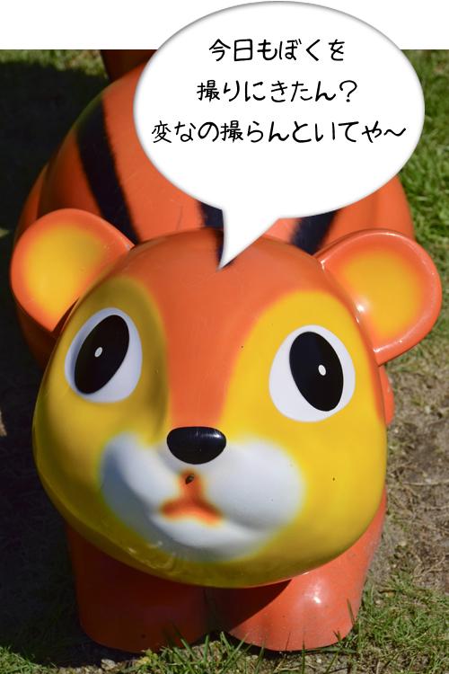risu_14_9_1.jpg