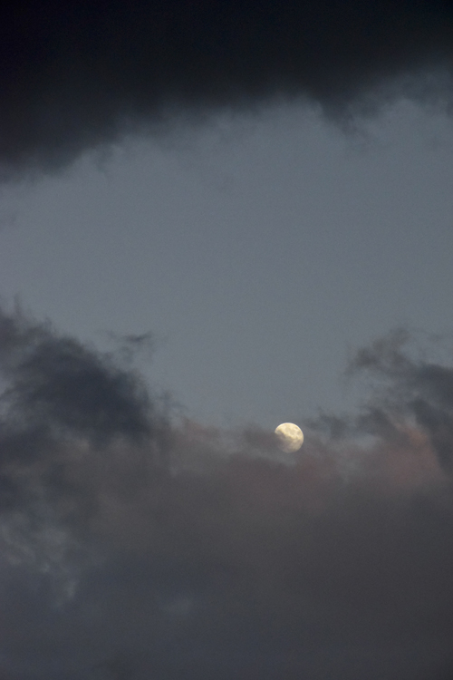 sky_moon_14_10_6_1.jpg