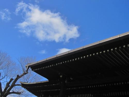 syakado_1.jpg