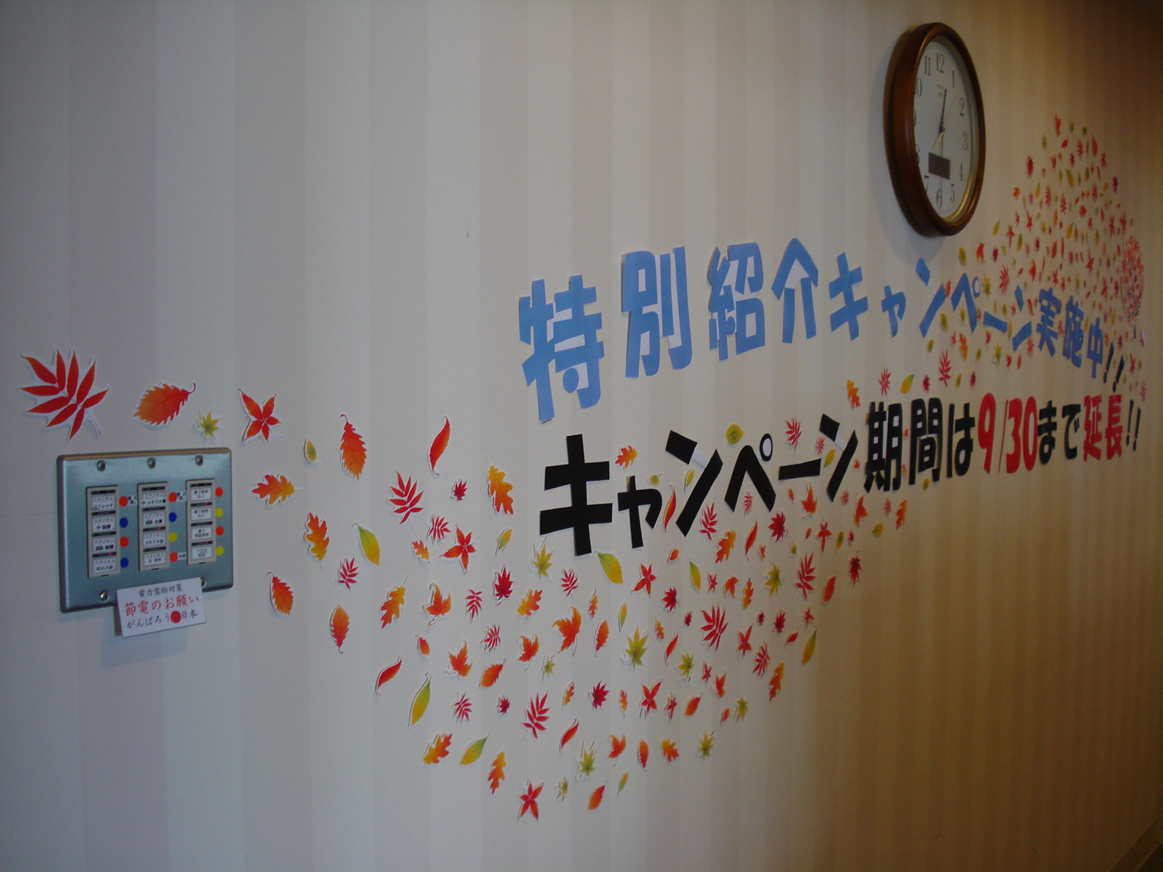 秋フロント1