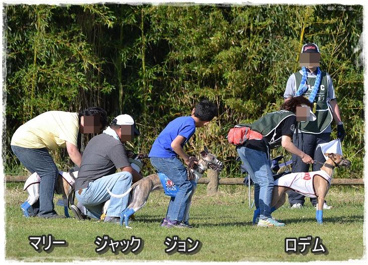 20140511-16.jpg