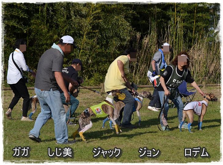 20140511-17.jpg