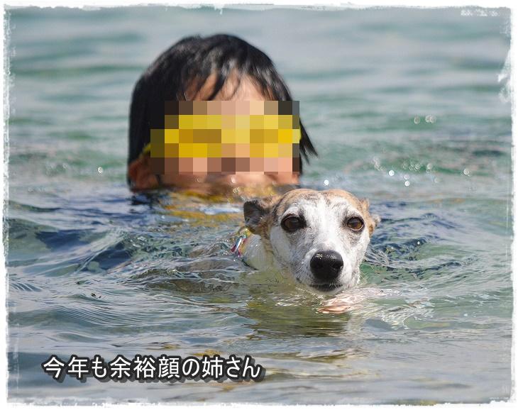 20140712-11.jpg