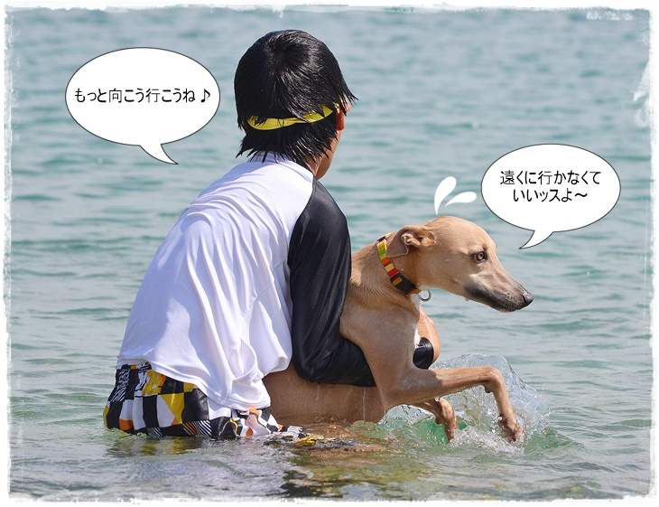 20140712-9.jpg