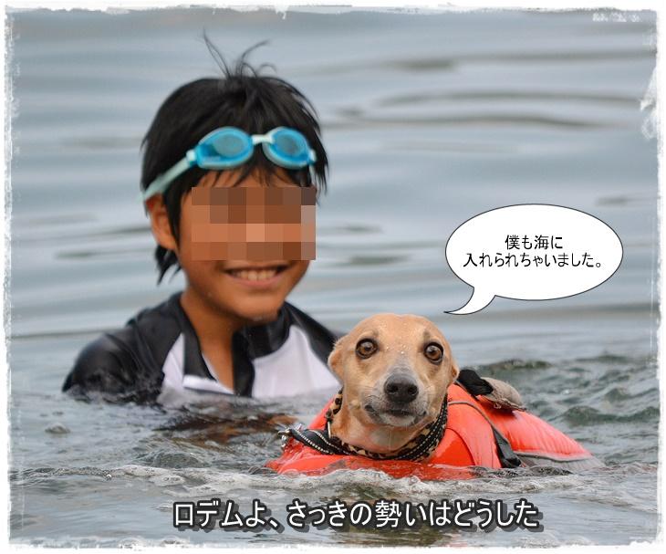 20140720-5.jpg