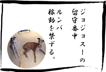 20140831_24.jpg