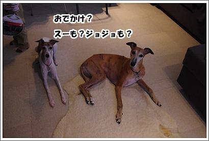 20140901_1.jpg