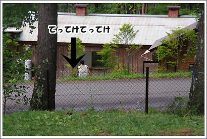 20140901_25.jpg