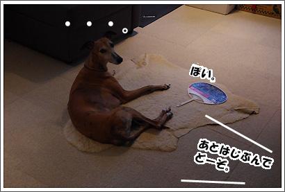 20140901_4.jpg