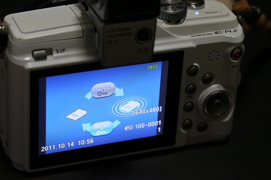 BQ6X9614.jpg