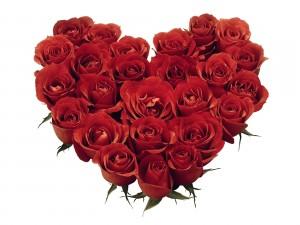 Valentines-day-roses1-300x225.jpg