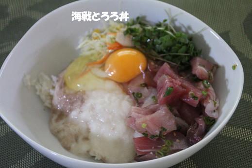 海中 2014-3-9-13