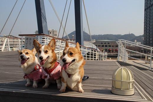 近場のお散歩門司港1 2014-3-23-4