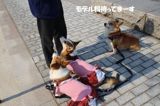 近場のお散歩門司港1 2014-3-23-8