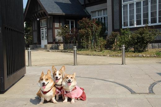 近場のお散歩門司港2 2014-3-23-7