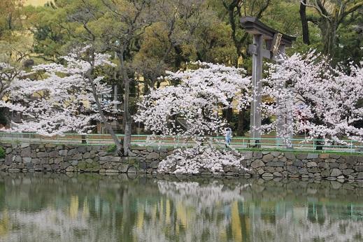 小倉城 2014-3-31-12