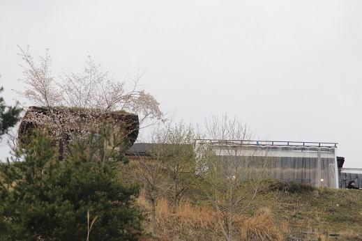 橡の丘 2014-4-12-2