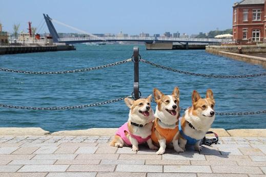 門司港散歩 2014-5-1-10