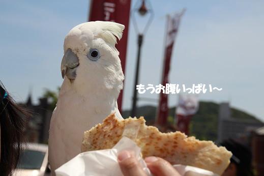門司港グランマーケット 2014-5-10-8