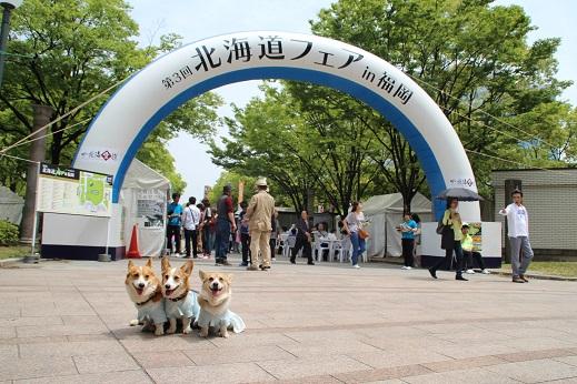 北海道フェア 2014-5-17-2