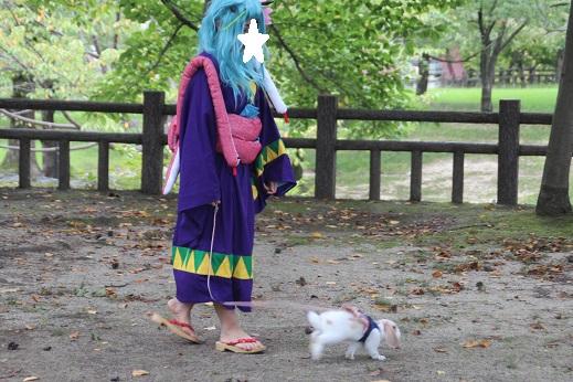 コスイベ 2014-9-20-6