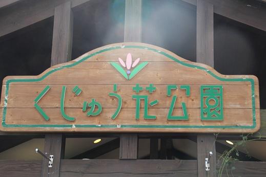 くじゅう花公園1 2014-9-28-1