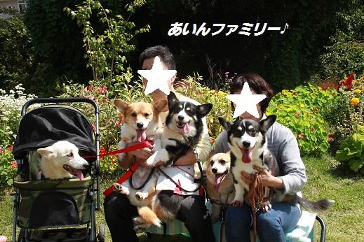 くじゅう花公園1 2014-9-28-11