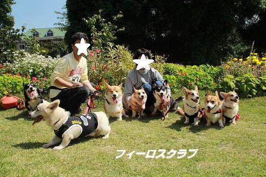 くじゅう花公園1 2014-9-28-12