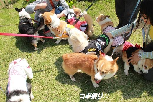 くじゅう花公園2 2014-9-28-4