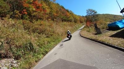 紅葉の黒菱林道